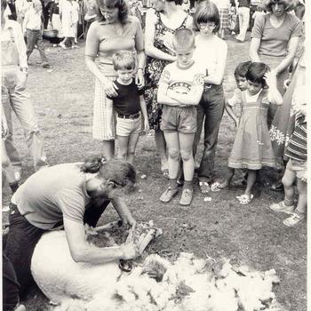Schaapscheerdersfeest 1981
