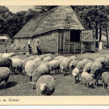 Ginkel - schaapskooi