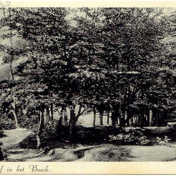 Doolhof in het Bosch - Ede 1938