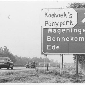 Koekoek`s Ponypark