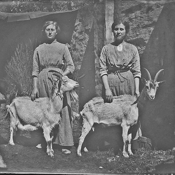 Twee vrouwen met geiten