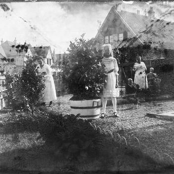 Gezelschap in tuin