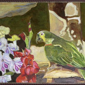 veelkleurig papagaai