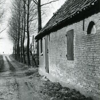 Zwart-wit foto van de kleine allee van Huis Aerdt te Herwen 1973