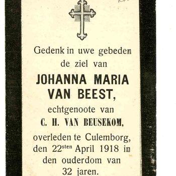 bidprent voor Johanna Maria van Beest. Geboren circa1886. Overleden 22-04-1918 te Culemborg