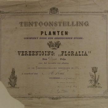 oorkonde op papier, geassocieerd met Vereeniging Floralia en dhr. M. Kuik, Culemborg,1881