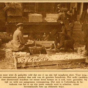 Foto, voorstellende een marktdag te Culemborg, jaren '20