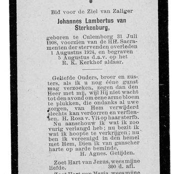 bidprent voor Johannes Lambertus van Sterkenburg. Geboren 31-07-1908 te Culemborg. Overleden 01-08-1924 te Culemborg