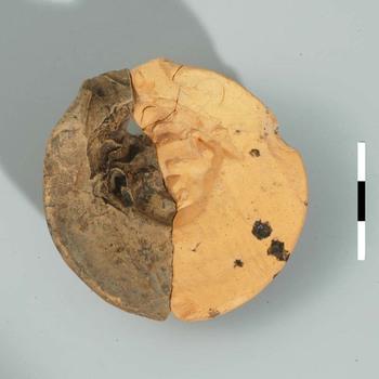 Mal van aardewerk uit de Romeinse tijd