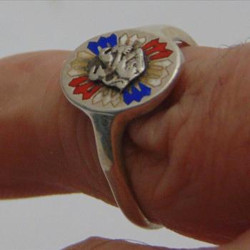 ring, met daarop de afbeelding van de Nederlandse Leeuw met rood-wit-blauwe pijltjes.