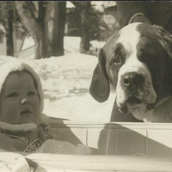Koninklijk Huis; Prinses Beatrix in kinderwagen met hond