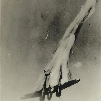 Meidagen '40, vliegtuig, Fokker G-1, neerstorten