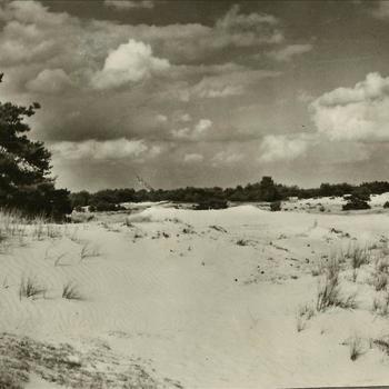 """Marva; Park """"De Hoge Veluwe"""", zandverstuiving"""