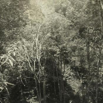 Ned. Indië, Tijgerbataljon: Maart1948 - koffie- en rubbertuin