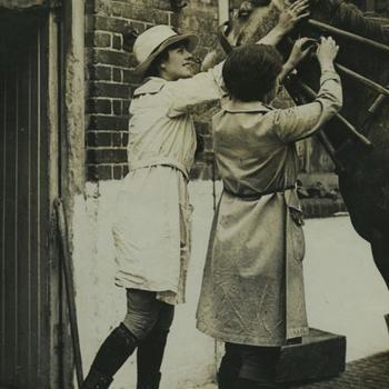 WO I; Vrouwelijke veearts onderzoekt paard