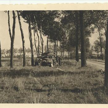 Tank tussen twee rijen bomen in Nederland