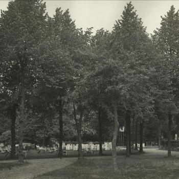 "tuin bij Hotel Erica, Tekst achterop: ""Tuin Hotel Erica ± 1937"""