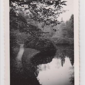 Foto van een landschapspark in Engelse stijl