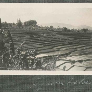 Landbouwvelden Tjoemboeloeiu, Nederlands-Indië