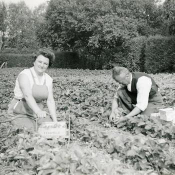Echtpaar Korstanje in de tuin, Biezelinge, 1959