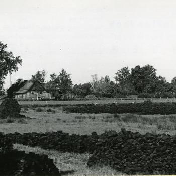 Drogende turf, Nieuw-Schoonebeek, 1946