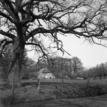 Boerderij bij Hengelo, 1943