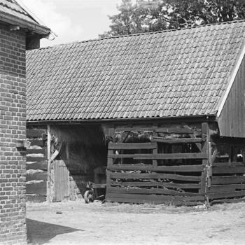 Schuur, Vriezenveen, 1947