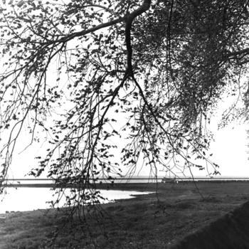 IJsselmeer bij Enkhuizen, 1942