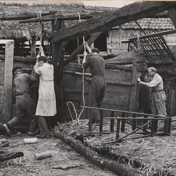 Afbraak van boerderij, Staphorst, 1950