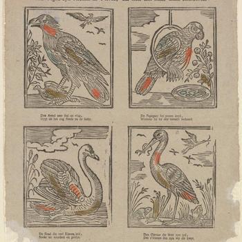 Vier Vogels zyn verbeeld na 't leven;  En ieder met hunn' naam beschreven.