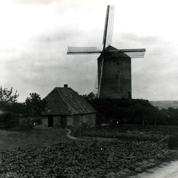 Molen, Zeddam, 1914-1934