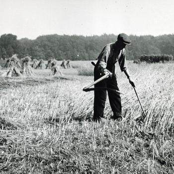 Graan maaien, Rheden, 1935-1940