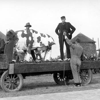 Landbouwfeest