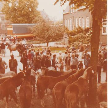 Paardenmarkt.