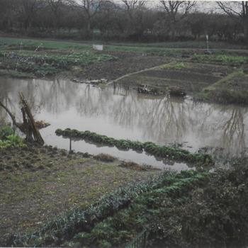 Hoogwater in de Korne.