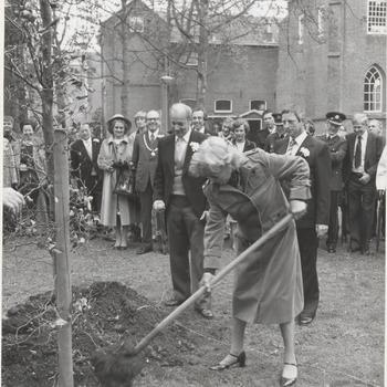 """Ter gelegenheid van het oranjevereniging 70 jarig bestaan van de Tielse Oranjevereniging plant Mary Dresselhuys de nog steeds gevierde, in Tiel geboren actrice, in het gazon bij de St. Maartenskerk twee boompjes. Haar vader was een van de oprichters van de Oranjevereniging en ook hij plantte zeventig jaar geleden een """"oranjeboom"""". Bij het planten heeft Mary assistentie, namens de Koningin, van dhr. W. P. van den Berge, secretaris van het Nationaal Comite en hoofd van de Rijksvoorlichtingdienst. Op de foto plant Mary Dresselhuys met als aandachtig toeschouwer o.a. dhr. L. Kool, voorzitter van de Oranjevereniging"""