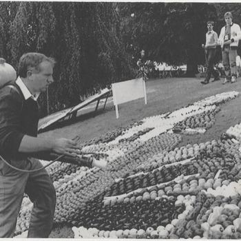 Het bespuiten van het fruit dat langs de gracht in het Kalverbos ligt voor de fruitmozaieken tgv het fruitcorso.