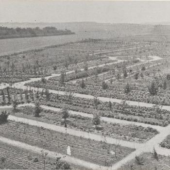 De pomologische tuin. De foto werd genomen na de uitbreiding van de tuin