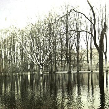 Coenenspark bij hoog water