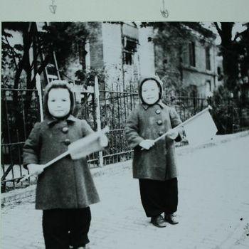foto gemaakt door dr Numans ca. 1945-04-01-1945-04-30