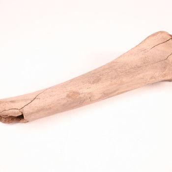Scheenbeen