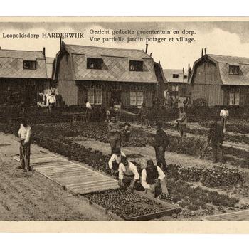 Prentbriefkaart, getiteld 'Leopoldsdorp Harderwijk'