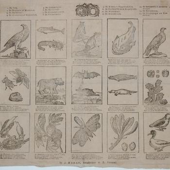 Centsprent met vijftien aparte prentjes met voorstellingen van vogels, vissen, planten, beesten, bomen. Opschriften. Houtsnede, J. Noman, periode 1800-1850.