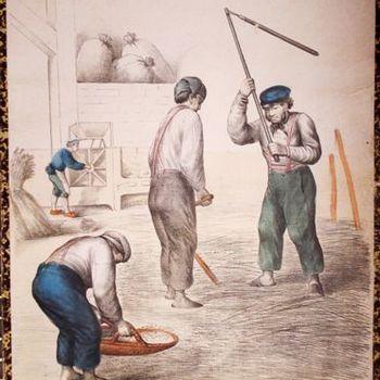 Schoolplaat, plantenrijk. Kleurenplaat van mannen welke aan het wannen zijn, met een vlegel dorsen en en het graan staan te zeven. No. 10 Wannen Dorschen. Periode 1857-1900