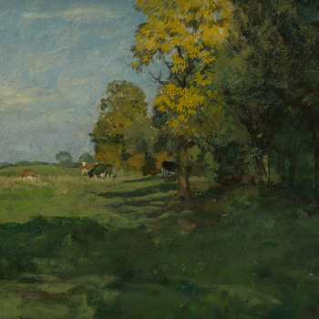 Grazende koeien aan de bosrand in de herfst