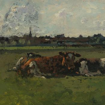 Drie liggende koeien