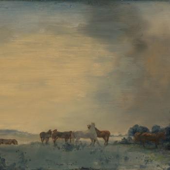 Noppende paarden bij de rivier