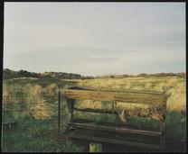 voederbak op poten, ijzeren draadhek; heuvelachtig gebied met pluimen gras; acht…