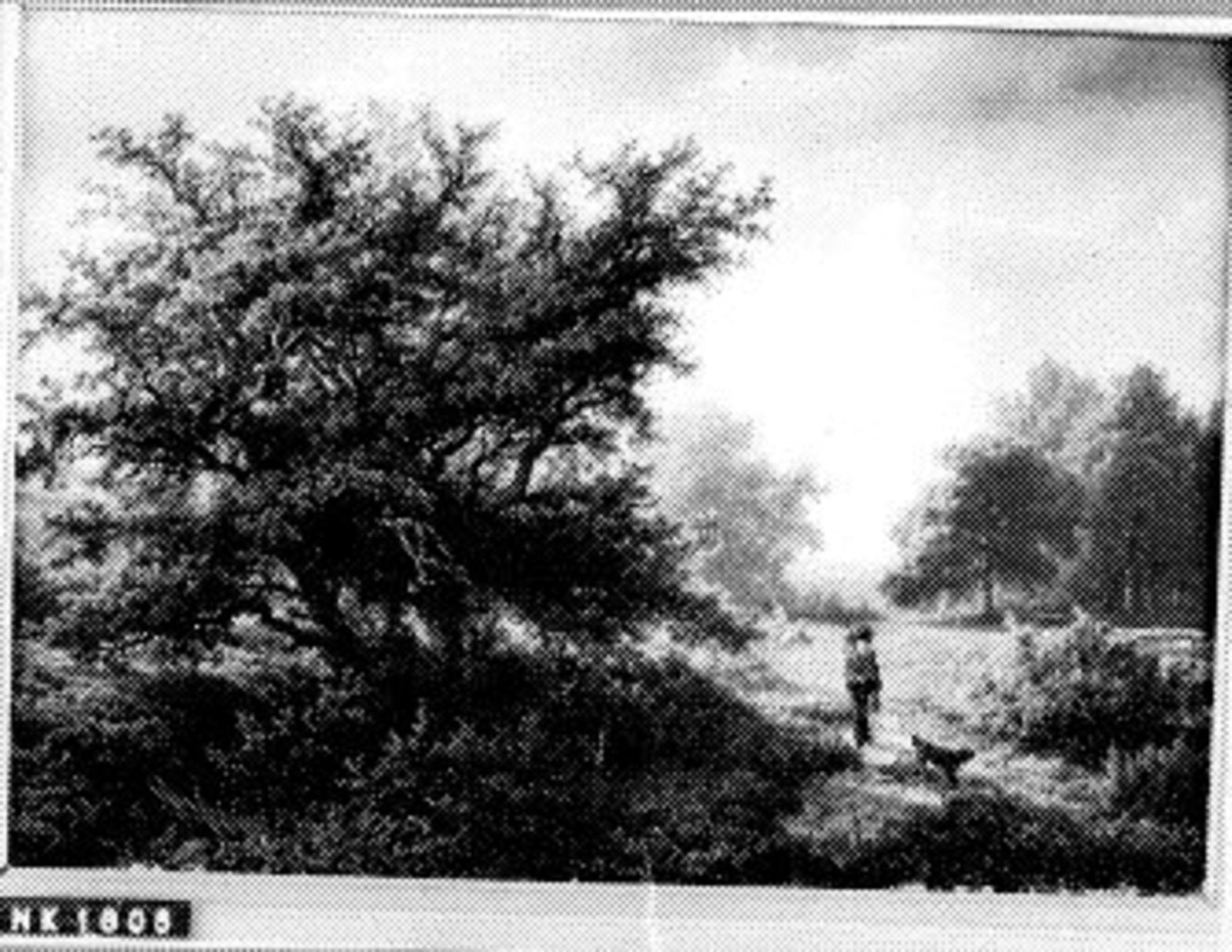 Heide met eikebomen en reiziger