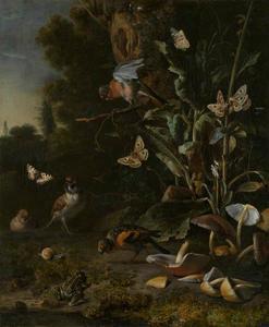 Bosstilleven met paddestoelen, vogels, vlinders en een pad